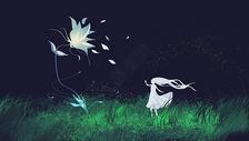 萤火之花图片