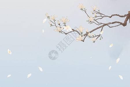 冬季雪景图片大全