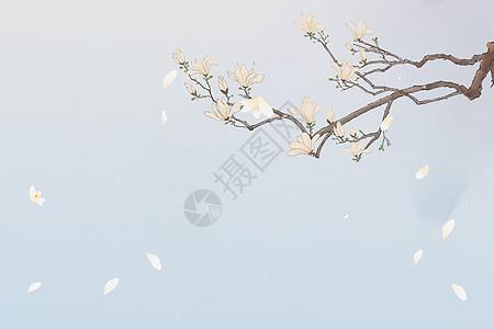 中国风花开凋零水墨画图片