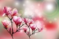粉红唯美印花矢量图图片