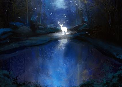 夜色中的麋鹿图片