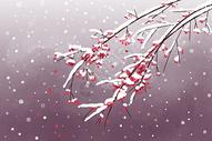 中国风白雪寒梅图片