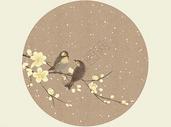 黄梅小雪图片