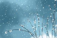 冬季雪景大雪插画图片