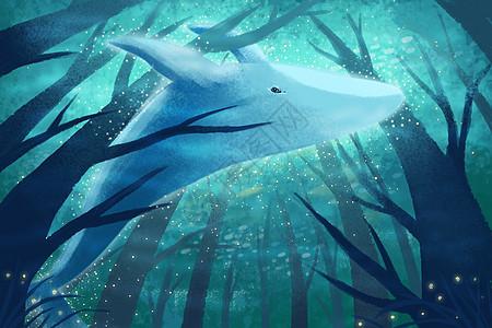 鲸鱼世界图片