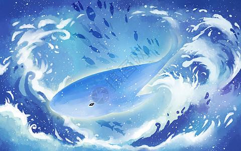 海浪中的鲸鱼图片