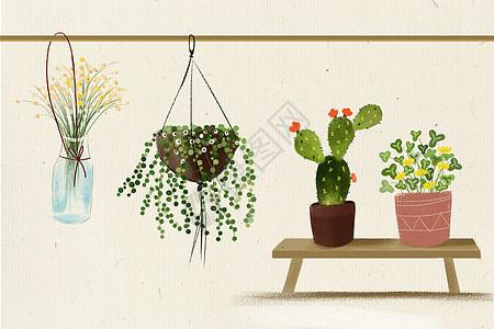 绿色植物和花卉图片