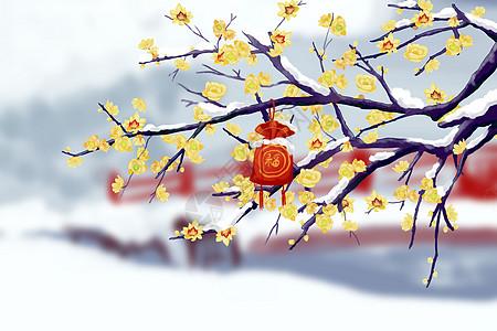雪中腊梅福袋图片