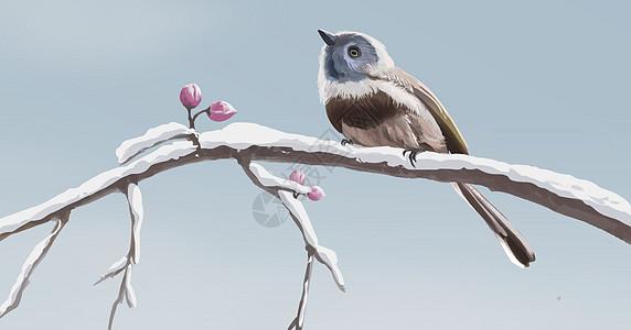 树枝上的鸟图片