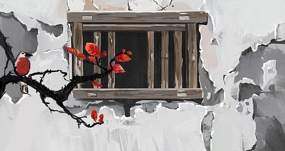 梅花与墙图片