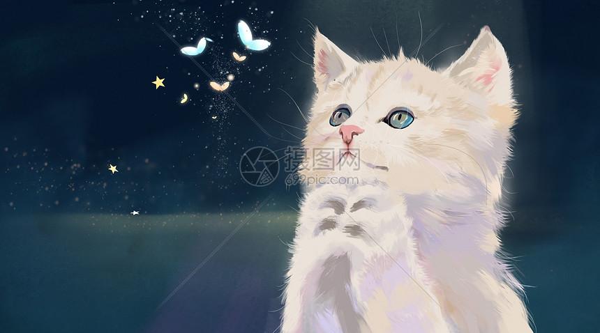 祈祷的猫图片