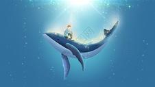 鲸鱼与少年插画图片