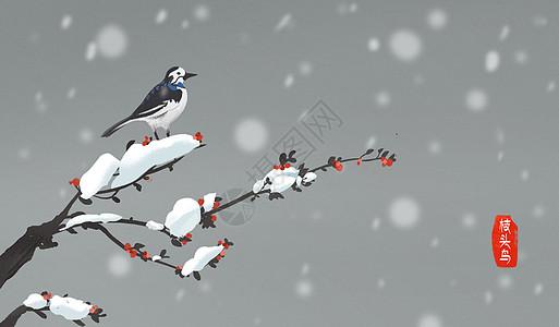 枝头的小鸟图片