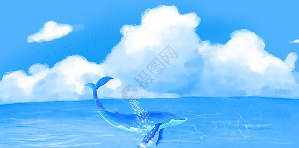 海洋中的鲸鱼图片