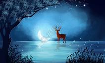 夜晚的森林图片
