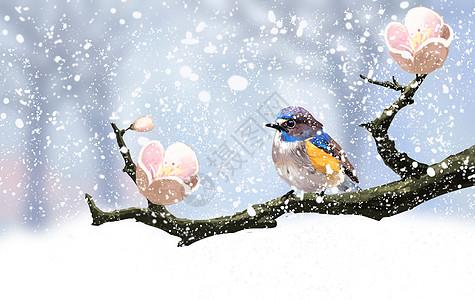 枝头上的小鸟图片