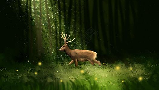 林间小鹿图片