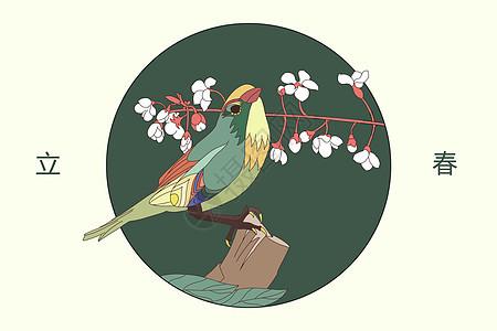 立春小鸟插画图片