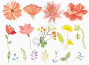 花卉元素背景图片