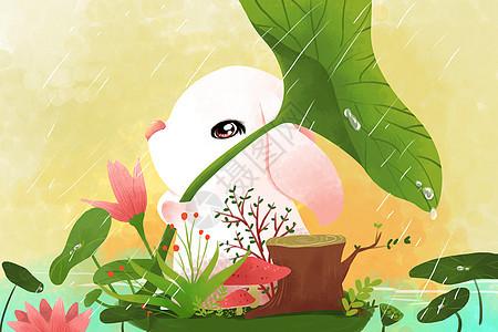春天萌宠壁纸图片
