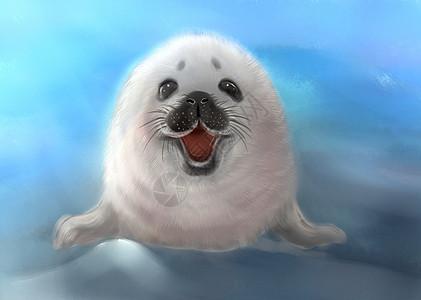 微笑海豹图片