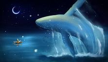鲸鱼与我的梦幻图片