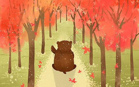 枫树下的棕熊背影图片