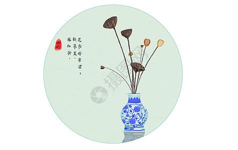 花瓶里的莲图片