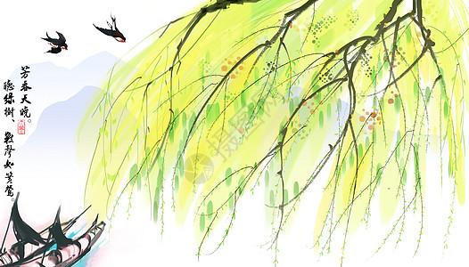 春天杨柳图片
