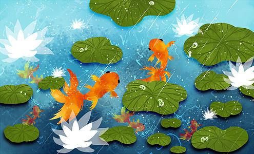 荷塘金鱼图片
