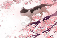 樱花树上的猫咪图片