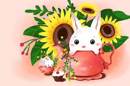春天兔子壁纸图片