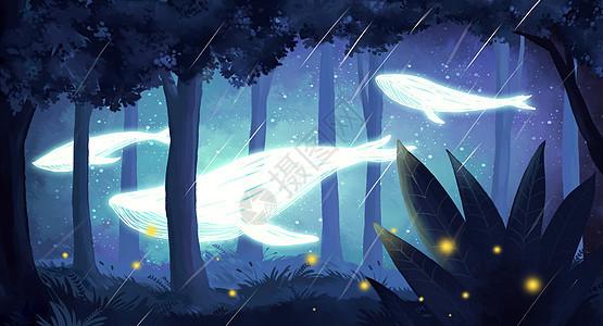 夜晚森林鲸鱼图片