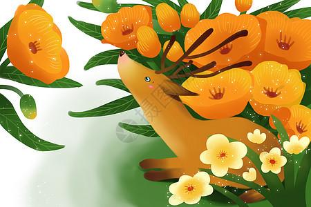 春天花朵壁纸图片