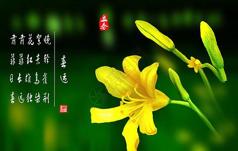 立春节气插画图片