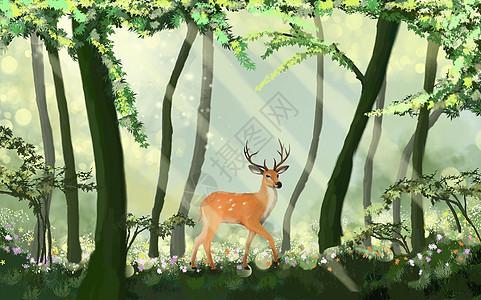林深遇鹿图片