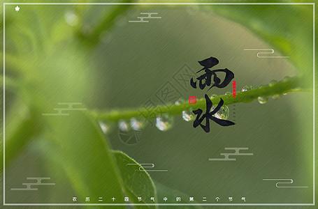 雨水节气图片