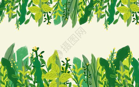 小清新植物背景图片