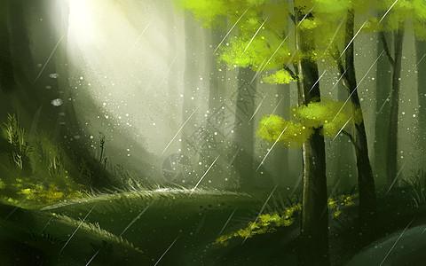 林中春雨图片