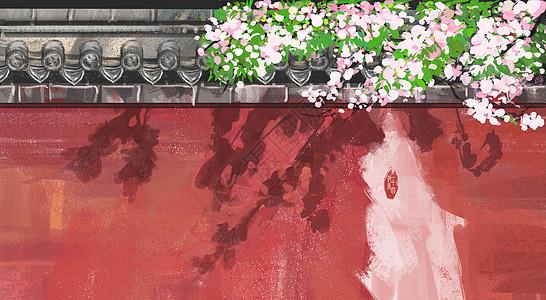 梅花古墙图片