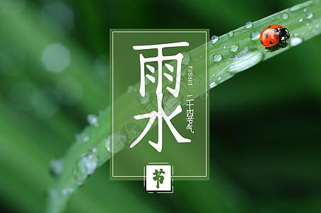 二十四节气之雨水图片