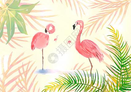 情侣火烈鸟植物水彩插画高清图片