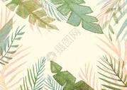 火烈鸟植物背景图片