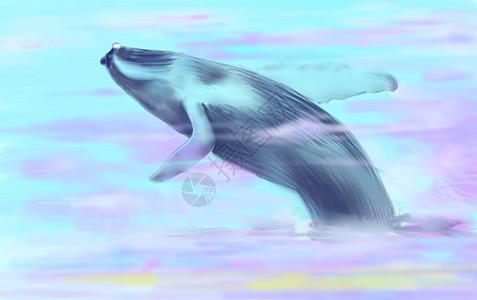 云上蓝鲸图片