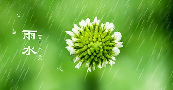 24节气雨水节日背景图片