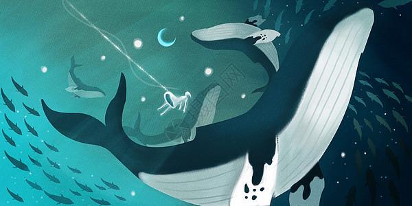 深海里的梦境picture