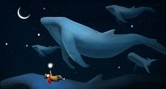 数鲸鱼的男孩图片