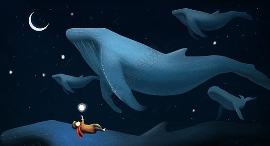 数鲸鱼的男孩picture