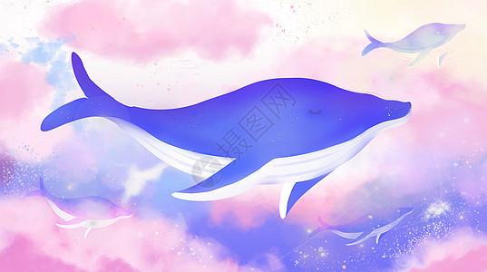 云中鲸鱼图片