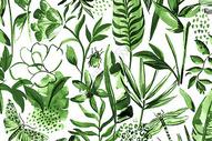 小清新绿色植物背景图片